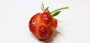 Ugly produce is beautiful: Ugly fruit and vegetables help end food waste