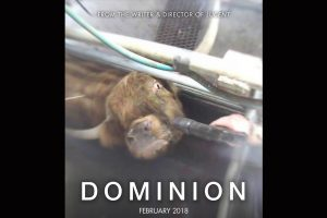 Dominion (2018 documentary)
